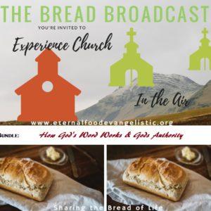 How God's Word Works & God's Authority ( TBB- Double Bundle 1)